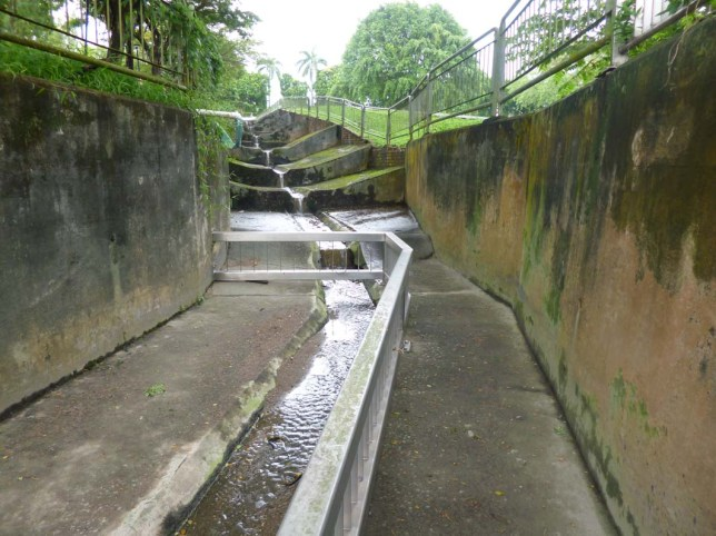 Eternal 888 at Bishan Park Dangerous Canal