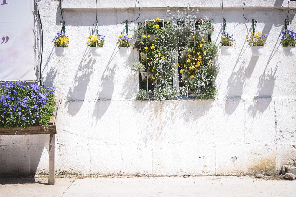 All White Flower Wall