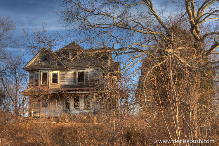 'House On the Hill' © Denise Bush
