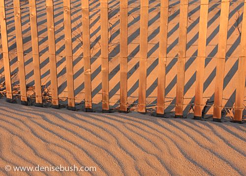 Sand Stripes © 2009 Denise Bush