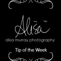 alisa murray tip of the week