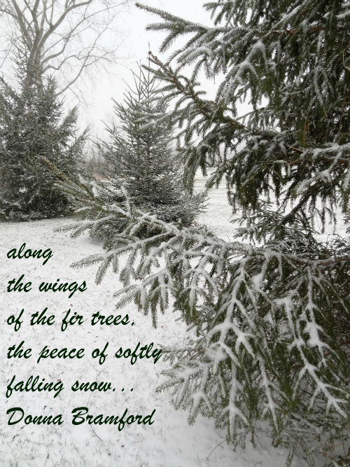 first-snow (1)