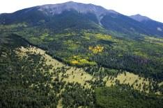 Mt. Humprey In The Fall