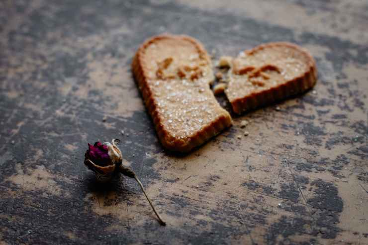 dry rose flower next to broken heart shaped cookie