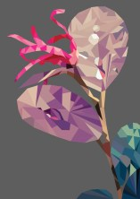 Polygon Plant