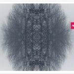 Couverture de livret Schubert de Denis Pascal