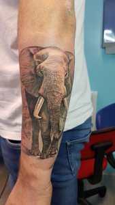 Denis Trevisani, tatautore Verona - Tatauggio elefante