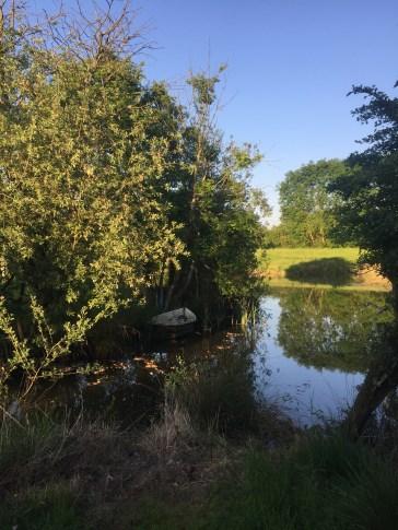 Fishing ponds at Lodge Farm, Hilgay Norfolk