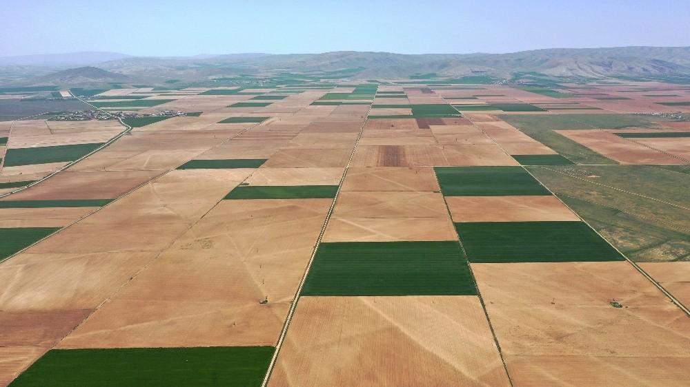 Tarımın birçok alanına yüzde 50 hibe desteği sağlanacak