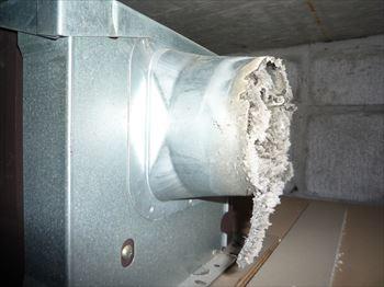 ダクト接続口に溜まっていたゴミ
