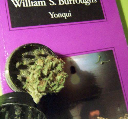 Yonqui / William S. Burroughs