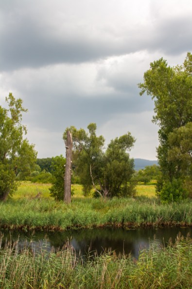 nature-reserve
