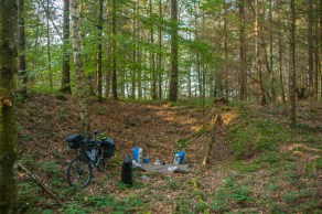 camp-spot-in-the-woods