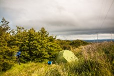 camping-in-the-bushes