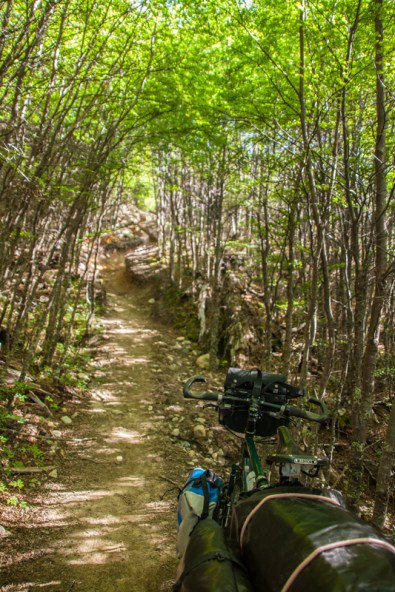 beginning-of-path-from-lago-desierto