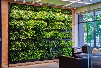 Urban Plantscapes Living Wall
