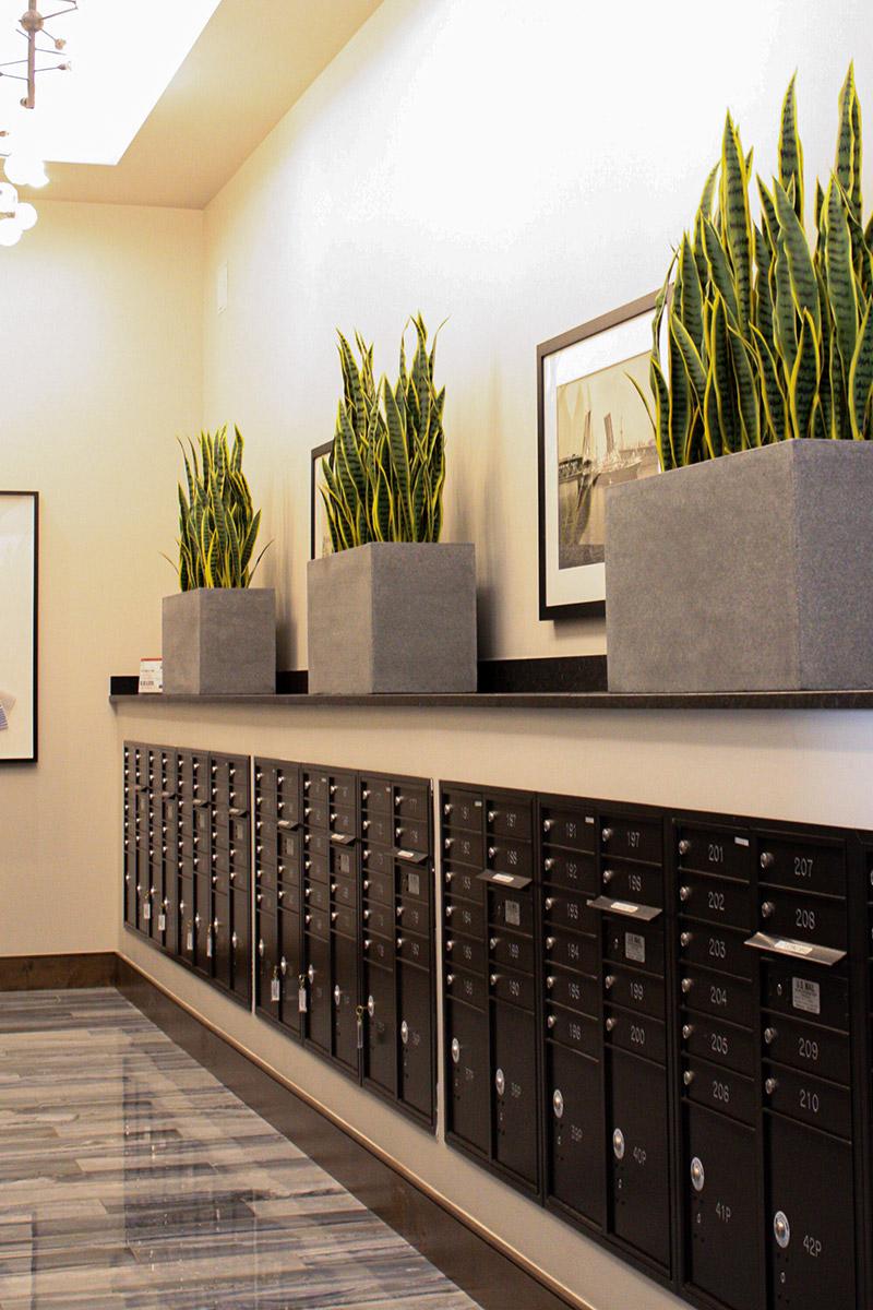 Pantone Colors Office Plants
