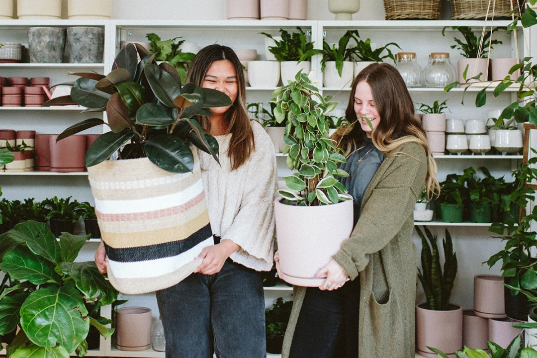 two plant shop workers holding plants