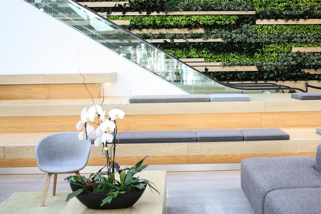 Urban Plantscapes Succulent Dishes
