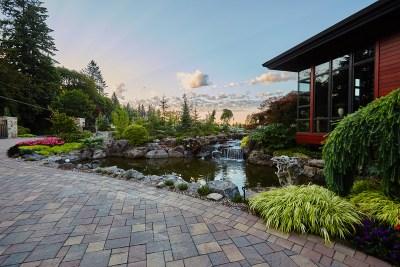 dream home pond