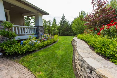 residential landscaping front yard with flowers