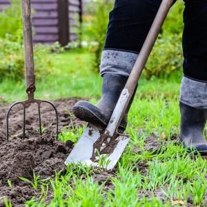 garden soil health