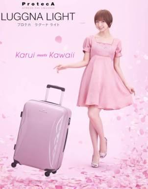 Nice Luggage.