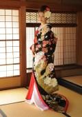 cranes on kimono inside
