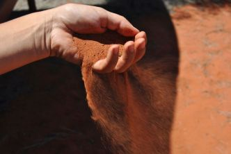 Roter Sand am Uluru, vom Wind aus der Hand geweht