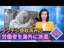 【中国共産党】新型コロナワクチンを摂取させた人を海外へ送り込む【新たな侵略手法?】の画像