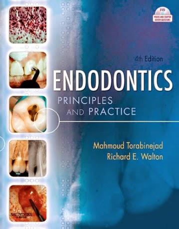 Grossman Endodontics 13th Edition Pdf