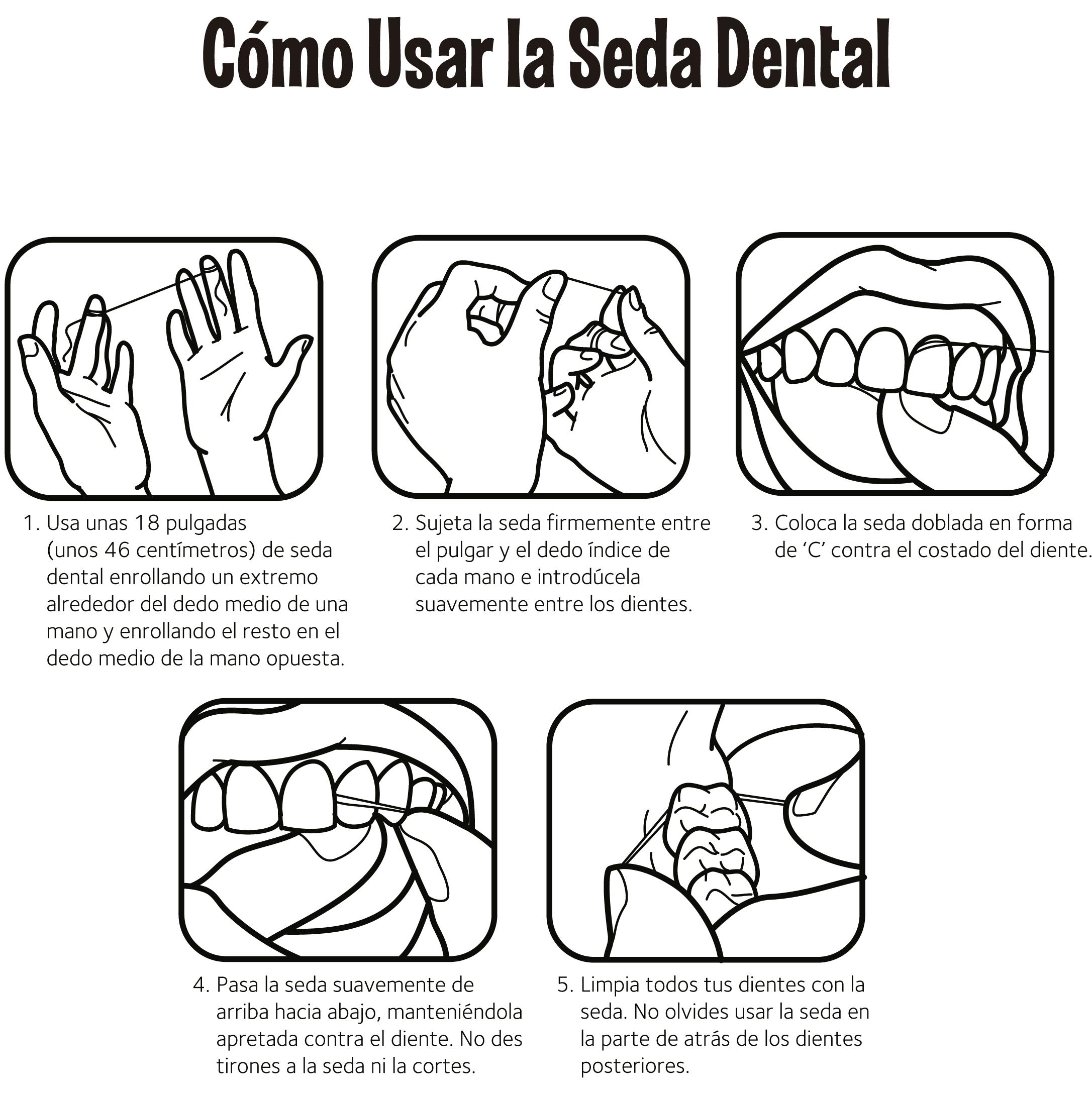 Como Uso La Seda Dental
