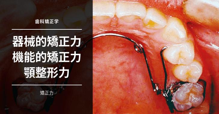 【歯科矯正学】矯正力:器械的矯正力・機能的矯正力・顎整形力