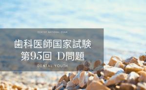 第95回 歯科医師国家試験:C問題