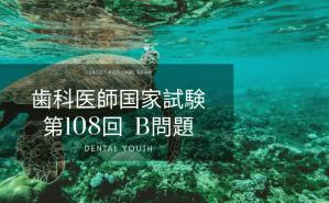 第108回 歯科医師国家試験:B問題