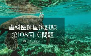 第108回 歯科医師国家試験:C問題