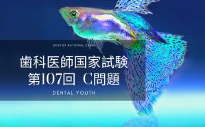 第107回 歯科医師国家試験:C問題