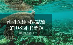 第108回 歯科医師国家試験:D問題