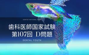 第107回 歯科医師国家試験:D問題