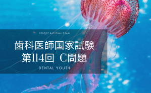 第114回 歯科医師国家試験:C問題