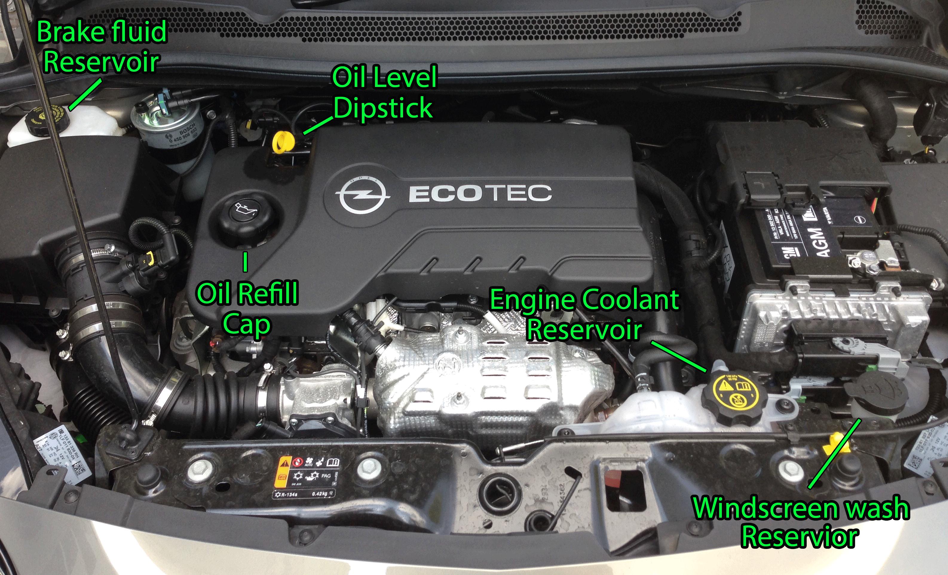 DIY Automotive Maintenance - Dent Goalie