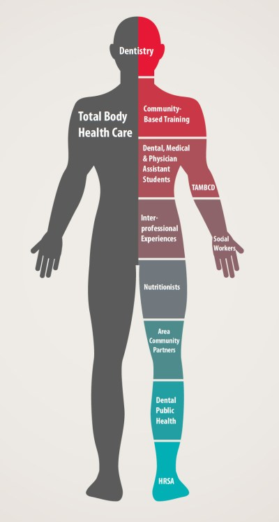 ThIllustration of a person divided by various health care disciplines