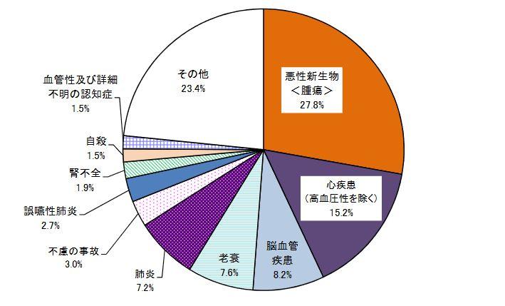 2017年度日本人死亡原因
