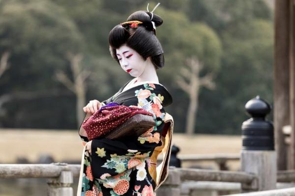 芸妓 菊亀
