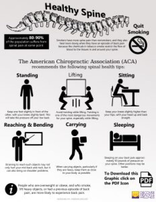 denver-colorado-chiropractic-healthy spine-infographic