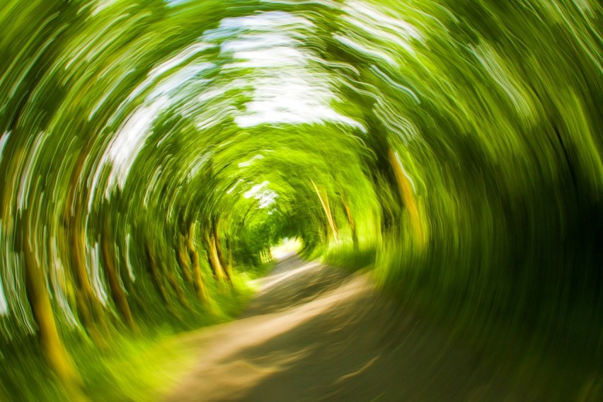 How Chiropractic Helps Dizziness & Vertigo