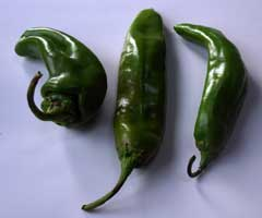 Sandia Chile Peppers