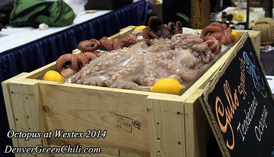 Gourmet Octopus