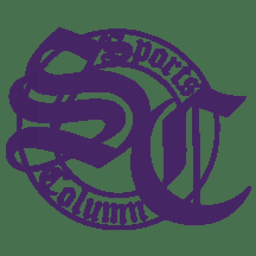 Denver Sports Column Logo