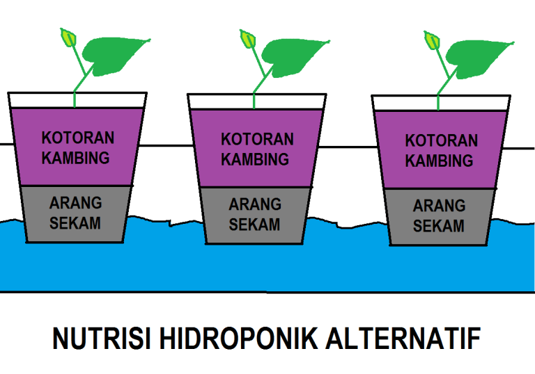 Nutrisi Hidroponik Alternatif